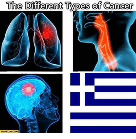 Different Types Of Memes - the different types of cancer stare cat com turkeyball meme on sizzle