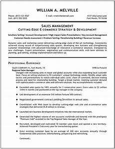 sales manager resume examples google search resumes With sample resume for managing director position
