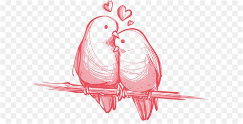 bird valentines day wedding gift wallpaper vector love