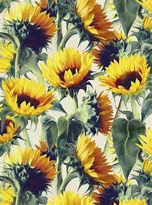 """Sunflowers Forever"" by micklyn 
