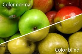 color blindness symptoms all you need to about color blindness md health