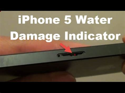 how to fix water damaged iphone 6 iphone 5 water damage repair what should you do if yo