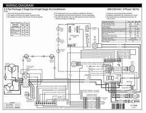 Wiring Diagram 208  230 Volt    3 Phase    60 Hz