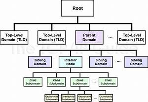 Family Tree Diagram