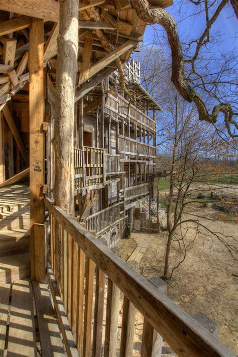 The Minister's Tree House, A Massive 80room Tree House In