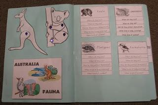 australian animals lapbook a moment in our world