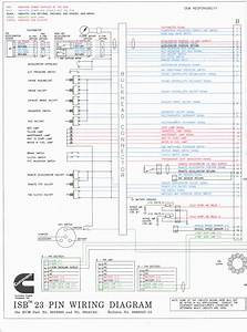 Cummins Wiring Diagram