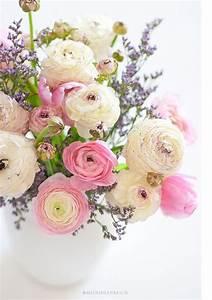 Mein Ideenreich Instagram : mein ideenreich welcome spring blumen flowers pastell peonien rosen und mehr blumen ~ Pilothousefishingboats.com Haus und Dekorationen
