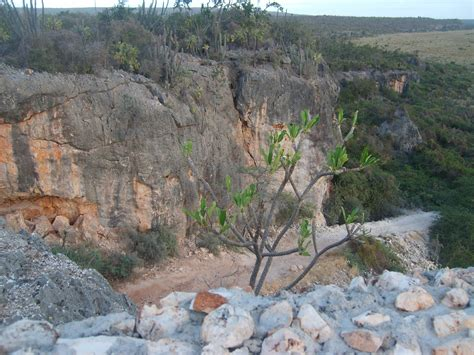 File:Jaragua National Park (Road2).JPG - Wikimedia Commons