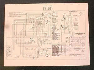 Wiring Diagram Refrigerator   Diagram Refrigerator - Best Price On Freezers