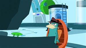Image - Perrybraindrain Jpg - Phineas And Ferb Wiki
