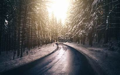 5k Road Snow Forest Nature Winter Tree