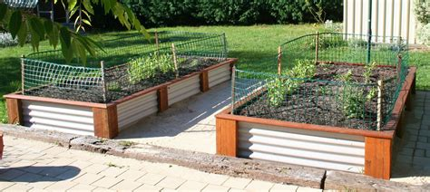 Corrugated Metal Garden Beds by Corrugated Iron Raised Garden Beds Corrugated Iron