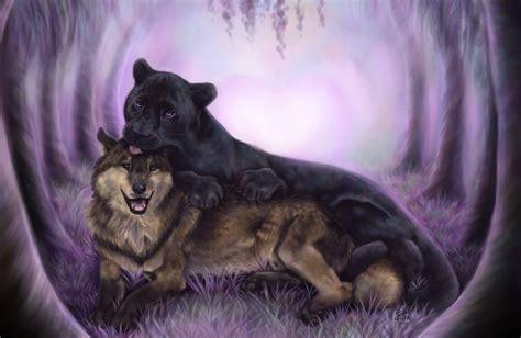 black panther blue eyes wallpaper  images