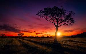 Sunset Scenery Wallpapers