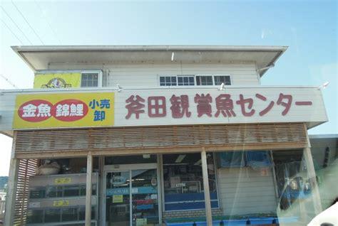 斧田 観賞 魚 センター