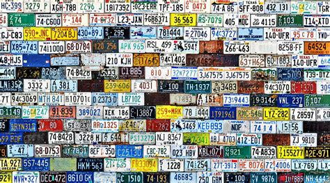 wall  american license plates photograph  christine