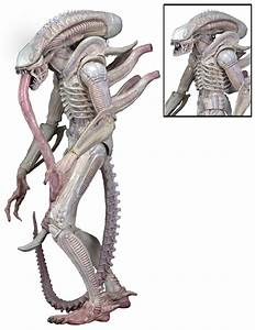 DISCONTINUED – Aliens – 7″ Scale Action Figures – Series 9