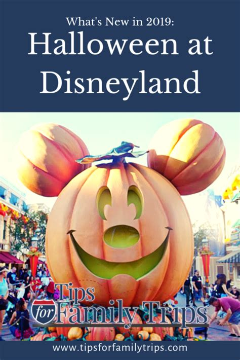 tips  halloween time  disneyland   tips  family trips