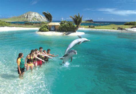 Sea Life Park Oahu Hawaii Activities