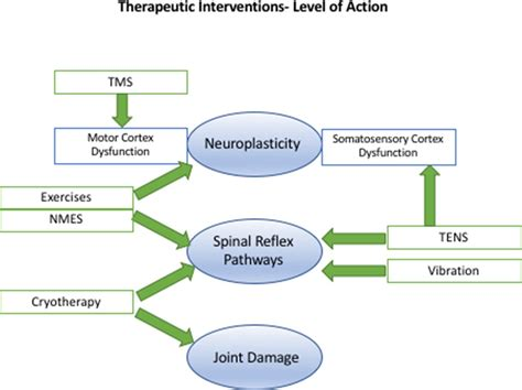 Arthrogenic muscle inhibition after ACL reconstruction: a