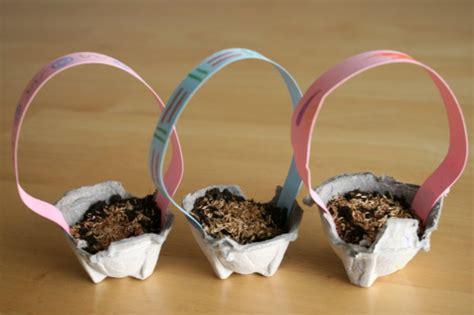 growing easter grass  egg carton baskets   takes