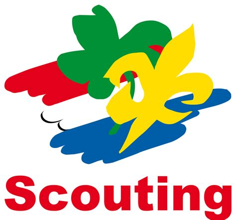 Opinions on Scouting