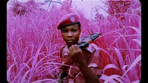 pink fields  war photographer richard mosse