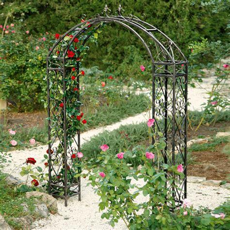 kletterrosen schneiden rosenbogen rosenbogen garden kletterrosen kaufen