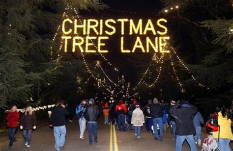 what are the dates for christmas tree lane in fresno tree to open saturday kmj af1