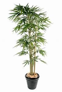 Plante Verte Salle De Bain : bambus plantas artificiais ingarden ~ Melissatoandfro.com Idées de Décoration