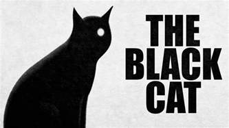 the black cat story the black cat edgar allan poe scary stories