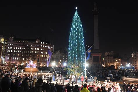 trafalgar square christmas tree the lighting ceremony and