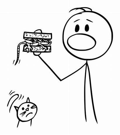 Sandwich Eating Vector Cartoon Clip Cat Accident