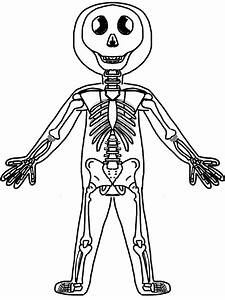 Skeletal System Coloring Pages Coloring Pages