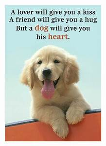 Best 25+ Cute dog quotes ideas on Pinterest | Puppy quotes ...