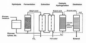 Patent Us20080248540 - Methods Of Producing Butanol