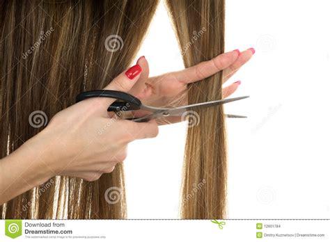 scissors   cut long hair stock images image