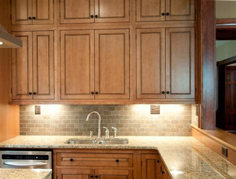 kitchen door cabinets raised panel cabinets bring elegance to your kitchen space 1566