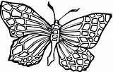Butterfly Coloring Printable Butterflies Drawings Adult Flower sketch template