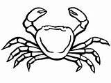 Coloring Crab Crabs Pages Ocean Printable Sea Crabe Coloriage Imprimer Gratuit Animals sketch template