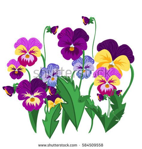 summer flowers mix clipart clipground