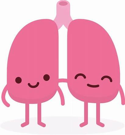 Lungs Healthy Clipart Health Lung Vaping Sarcoidosis