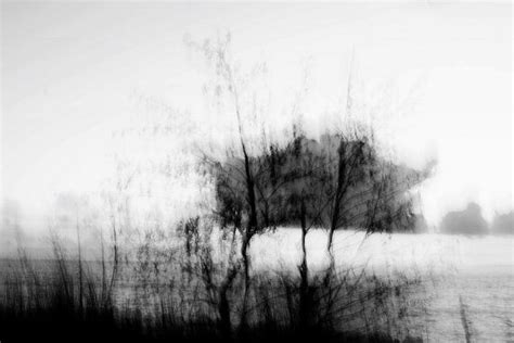 Abstract Black And White Photography Nature by Nature Abstract Photography Black And White Photo