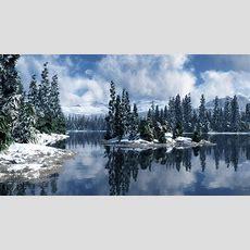 Winter Wonderland Desktop Background ·①