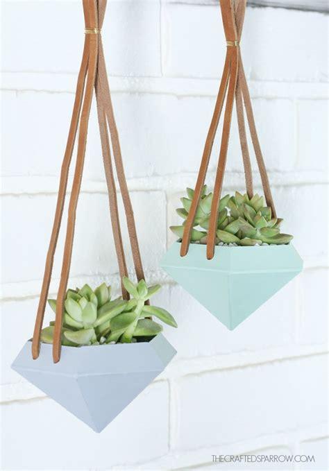 creative ways  display succulents