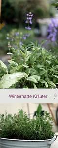 Winterharte Pflanzen Für Balkon : winterharte kr uter f r balkon und garten gartenfreunde winterharte kr uter garten und ~ Somuchworld.com Haus und Dekorationen