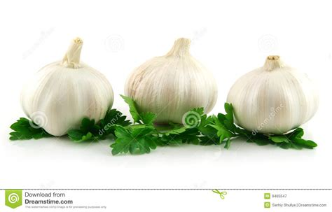 is garlic a vegetable garlic vegetable with green parsley leaves royalty free stock photography image 9465547