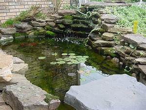 Exteriors Fish Pond Designs Easy Koi Ideas Home And