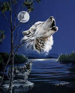 White Wolf Howling at Moon
